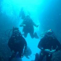 diving_lopar21