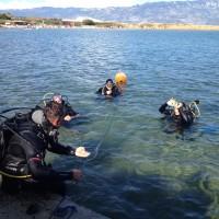 diving_lopar31