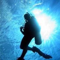 diving_lopar16