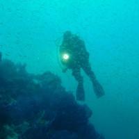 diving_lopar13