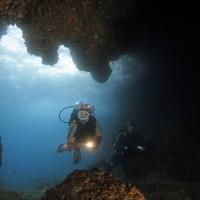diving_lopar2